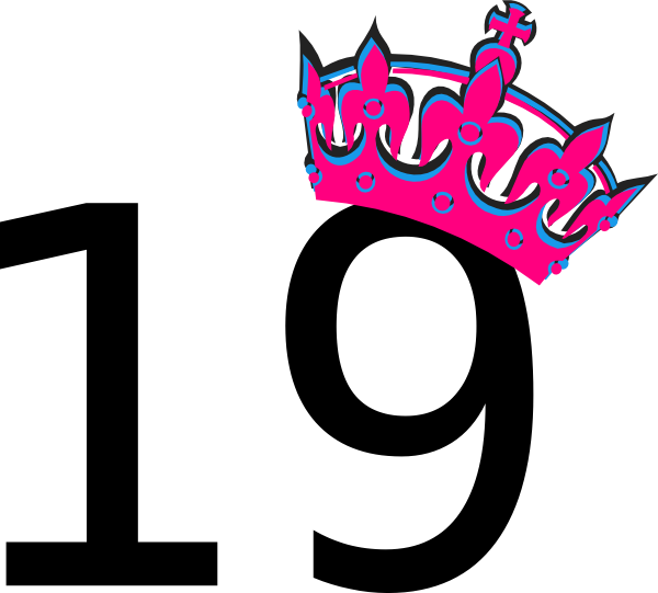 pink-tilted-tiara-and-number-19-hi